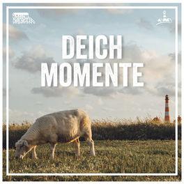 Show cover of Deichmomente