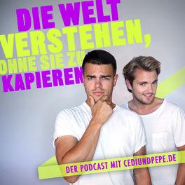 Show cover of Die Welt verstehen, ohne sie zu kapieren.